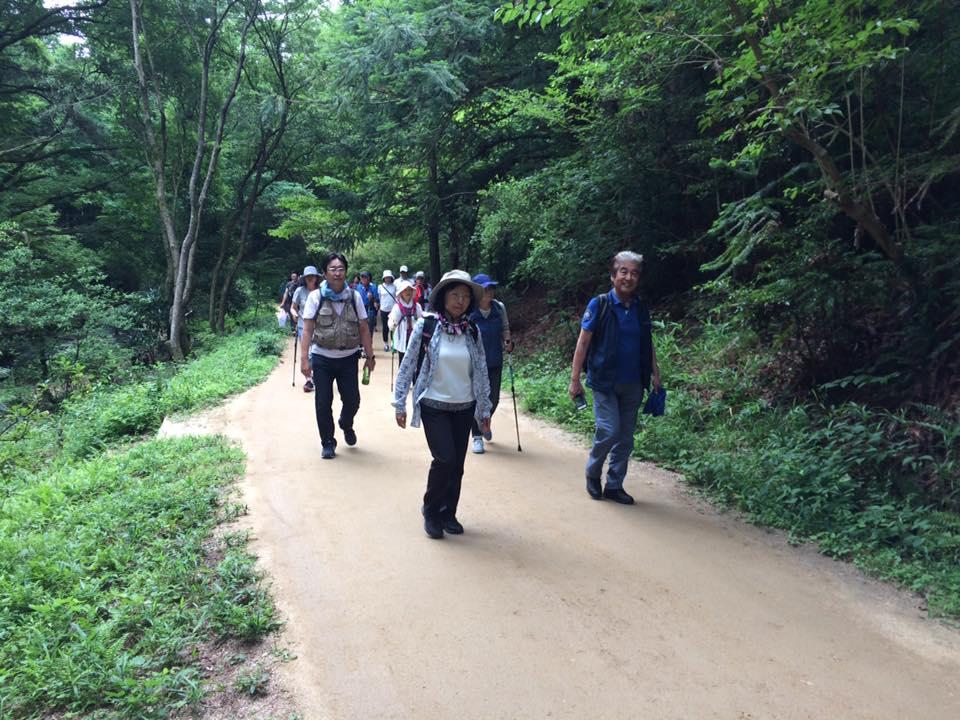 神戸森林植物園ウエルネスウォーキング効果検証モニター(第1期)のイメージ